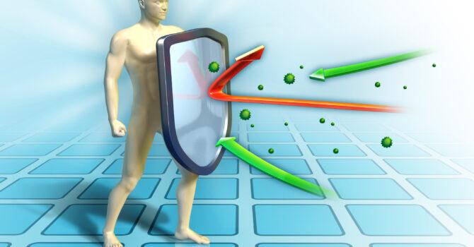 Como Aumentar A Imunidade?