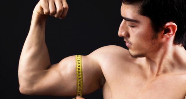 Medindo Biceps 620×330