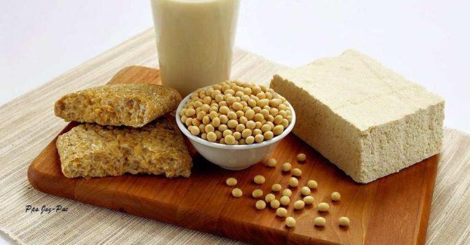 Consumo De Soja é Garantia De Muitos Benefícios à Saúde