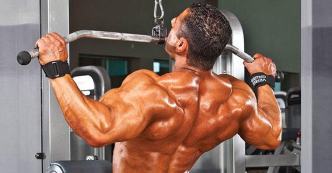 Os 4 Principais Exercícios Para Costas Musculosas