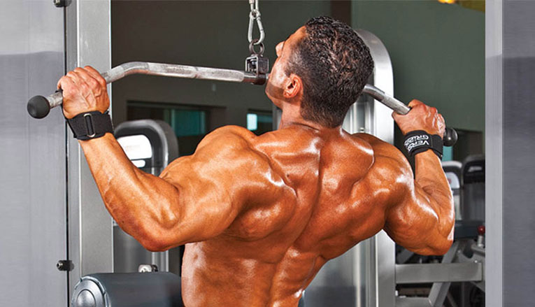Hypertrophy Back Workout