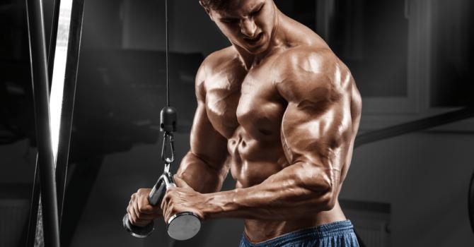 O Melhor Treino De Tríceps Para Aumentar Seu Braço