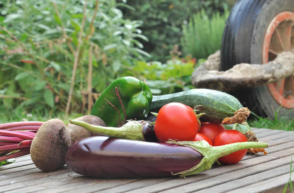 96453 Alimentos Organicos E Nao Organicos Conheca As Principais Diferencas