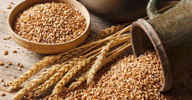 Consumo De Cereais Previne Câncer E Doenças Cardíacas
