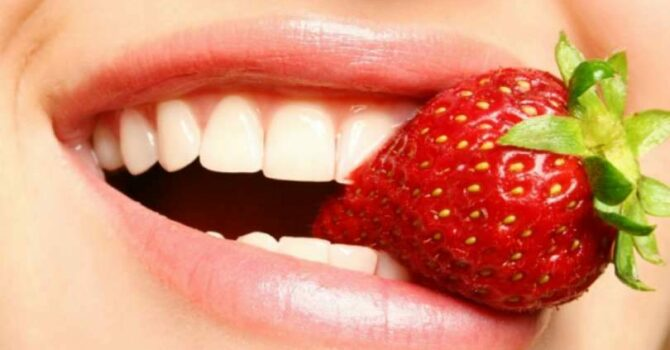 Morango Protege Células Sanguíneas Do Envelhecimento Precoce