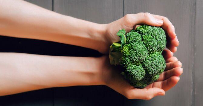 Brócolis Pode Ajudar Na Recuperação De Doenças Pulmonares