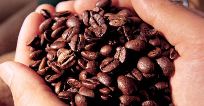 Conheça Os Principais Benefícios Do Café