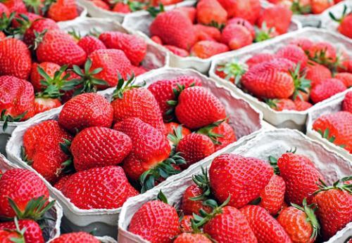 Frutas Vermelhas Reduzem O Risco Do Mal De Parkinson