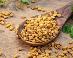 Feno-grego Ajuda A Emagrecer E Reduz O Colesterol