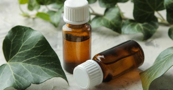 O Que São Medicamentos Fitoterápicos?