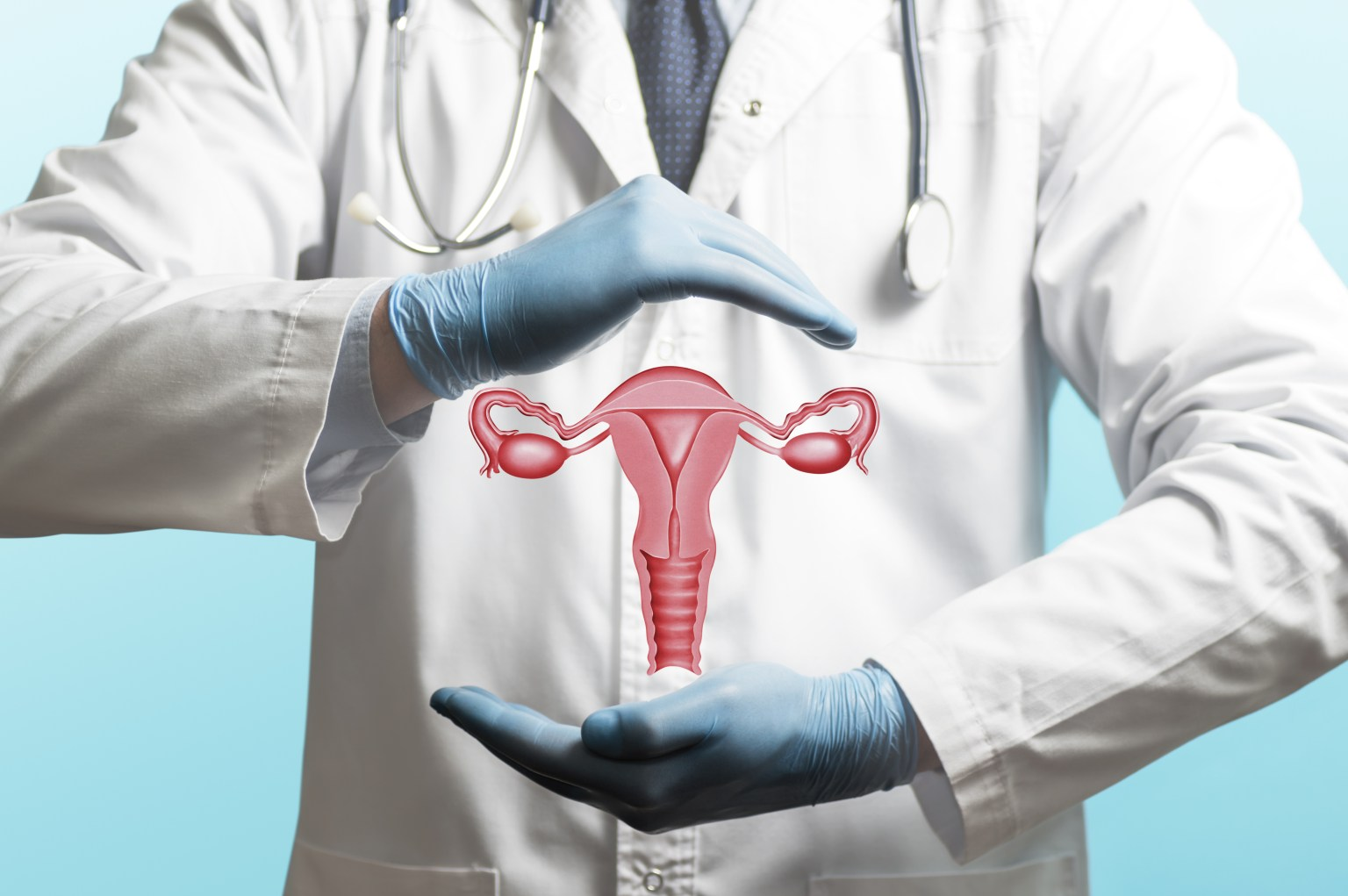 Concept Of A Healthy Female Reproductive System.