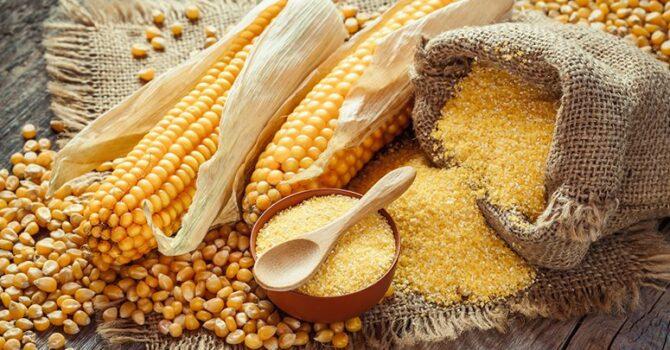 Milho é Rico Em Vitaminas E Minerais, Mas Deve Ser Consumido Com Moderação