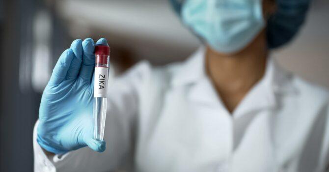 Nova Linhagem Do Zika Vírus é Descoberta No Brasil, Diz Estudo