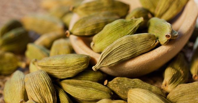 Cardamomo E Seus Benefícios Contra Inflamação