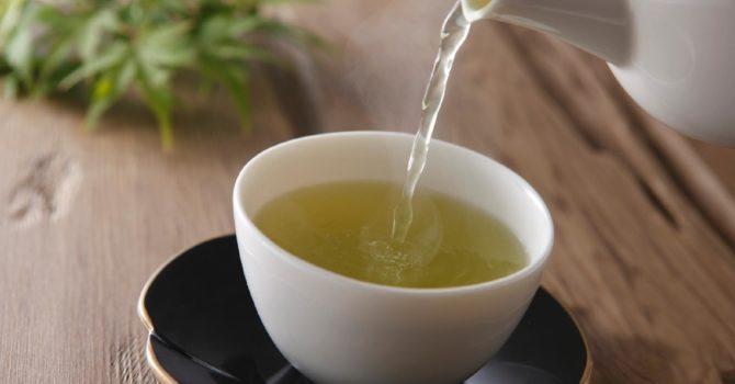 Chá Verde Pode Diminuir A Gordura Corporal