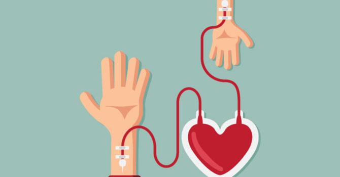 Doação De Sangue: Veja A Importância De Se Tornar Um Doador