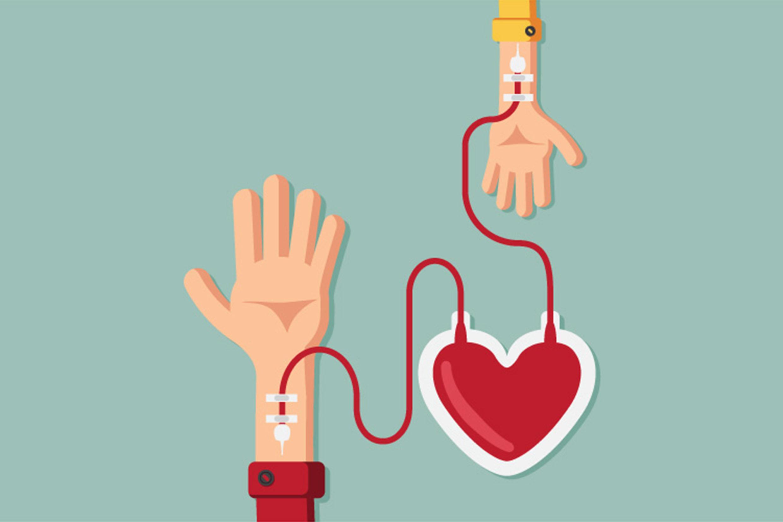 Doação De Sangue (Foto: Freepik)