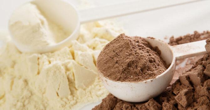 Albumina Ou Whey Protein: Qual é O Melhor?