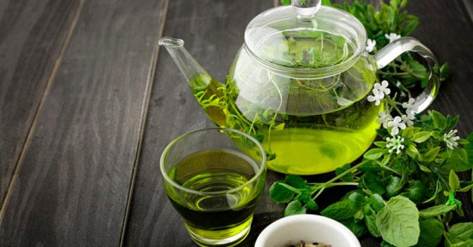 Chá Verde Emagrece? Confira Os Benefícios
