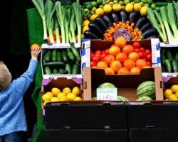 Bateu Fome Mas Não Quer Engordar? Esses Alimentos Podem Te Ajudar