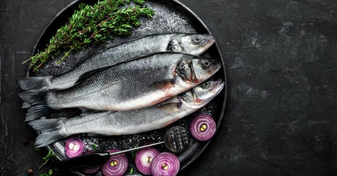 Gorduras Dos Peixes, Como Controlar?