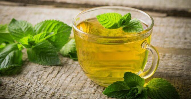 Veja Alguns Benefícios Do Chá De Alecrim