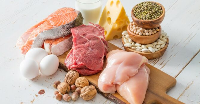 Proteína Aumenta O Gasto De Energia?