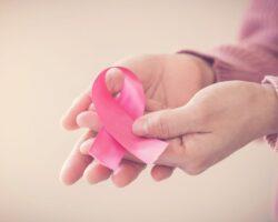 Outubro Rosa: Saiba Tudo Sobre A Importância Da Mamografia!